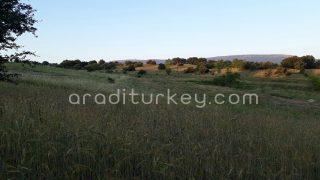 اراضي في يلوا